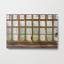 Window of an orangery Metal Print