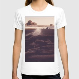 OLD LOGS WEATHER IN SANDY COVER NEAR TRINIDAD NARA 543054 T-shirt