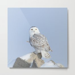 The Summit Metal Print