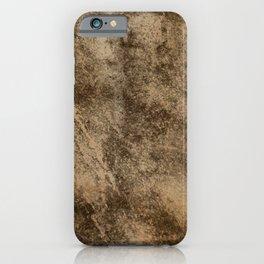 Stone Series IV: Brownite iPhone Case