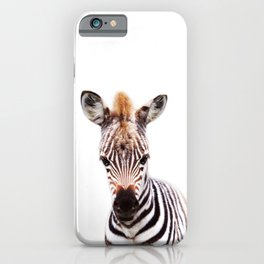 Baby Zebra, Baby Animals Art Prints by Synplus iPhone Case
