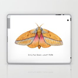 Bisected Honey Locust Moth (Sphingicampa bisecta) Laptop & iPad Skin