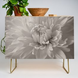 Monochrome chrysanthemum close-up Credenza