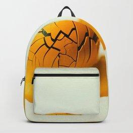 Yowk Backpack