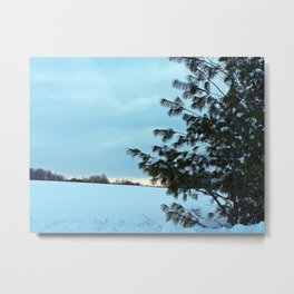 Between Field and Forest Metal Print