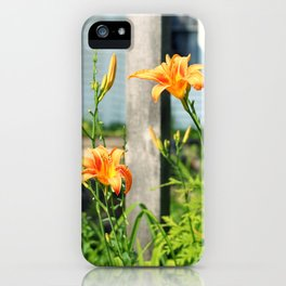 Growing Lilys iPhone Case