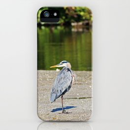 Looking for the Dream iPhone Case