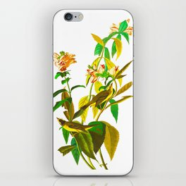 Green Black-capt Flycatcher iPhone Skin