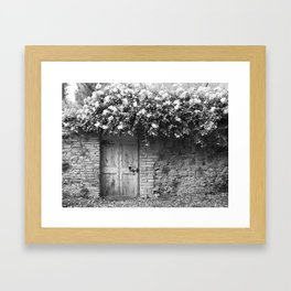 Old Italian wall overgrown with roses Framed Art Print