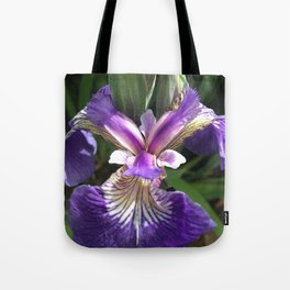 Alaska Wild Iris by Mandy Ramsey, Haines, Alaska Tote Bag