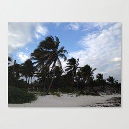 Tulum (wind-blown palm trees) Canvas Print