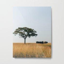 African Summer Metal Print