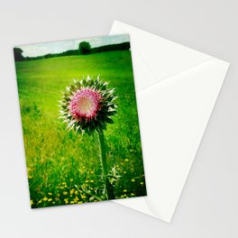 Wild and Hardy Stationery Cards