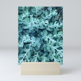 botanical blue green fat hen sedum telephium plants Mini Art Print
