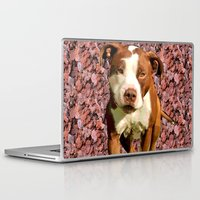 pitbull Laptop & iPad Skins featuring Pitbull on Pink Background by Crayle Vanest