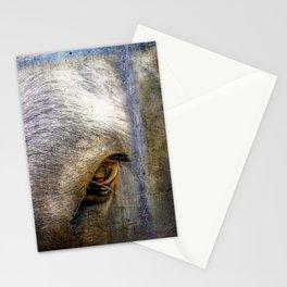Morningsun Donkey Stationery Cards