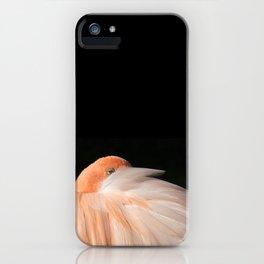 Coup d'oeil iPhone Case