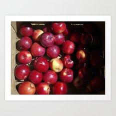 Apple Harvest! Art Print