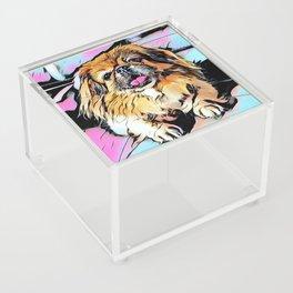 Pekingese Cartoon photo Acrylic Box