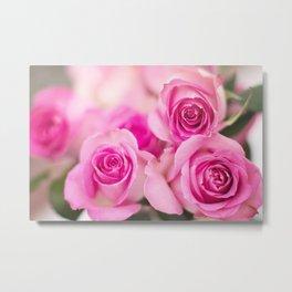 Hot Pink Roses Metal Print
