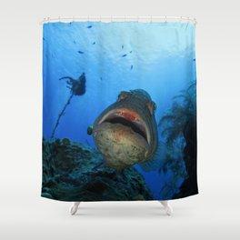 Big Nassau Grouper Shower Curtain