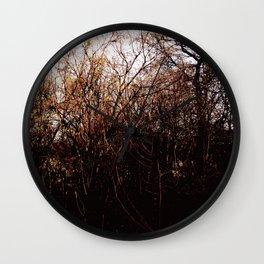 twigs Wall Clock