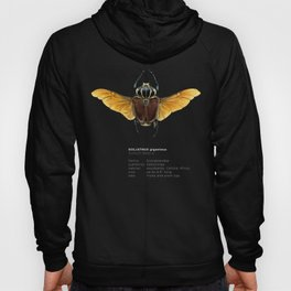 The Vintage Beetles Collection Hoody