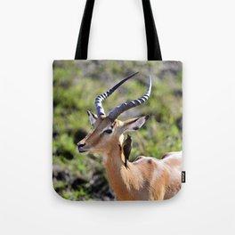 Wildlife Gossip Tote Bag