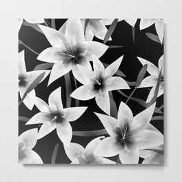 White lilies on a black background . Metal Print