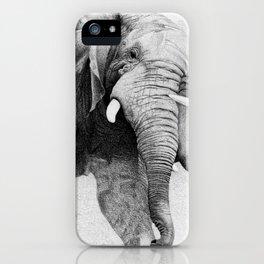 Mochipas iPhone Case