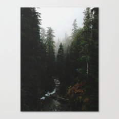 Rainier Creek Canvas Print