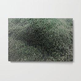 Icelandic Moss Metal Print