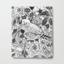 Zebra finch and rose bush ink drawing Metal Print