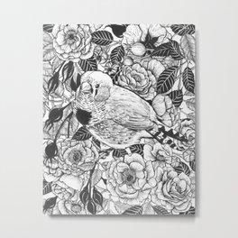 Zebra finch and rose bush ink drawing Metal Print