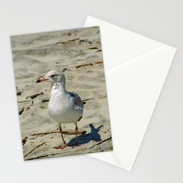 Ignored by a Seagull Stationery Cards
