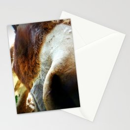 So Nosey Stationery Cards