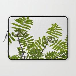 Green Rowan Leaves White Background #decor #society6 #buyart Laptop Sleeve