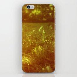 SNOW DROPS iPhone Skin