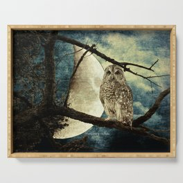 Barred Owl Bird Night Moon Blue Tans Country Art A137 Serving Tray