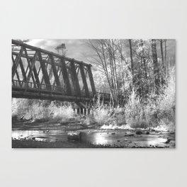 NO TIES Canvas Print