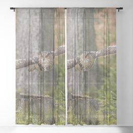 Eagle Owl In Flight. Sheer Curtain