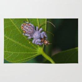 White spider eating prey Rug