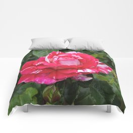 "A Rose Named ""Neil Diamond"" Comforters"