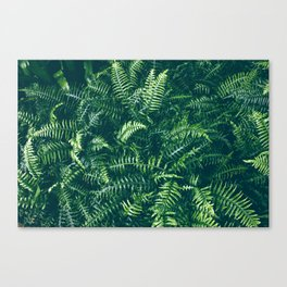 Leaves I Canvas Print