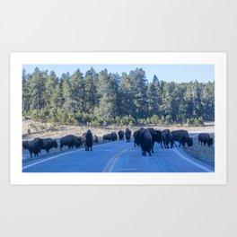 South Dakota Traffic Art Print