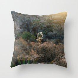 Desert Light Throw Pillow