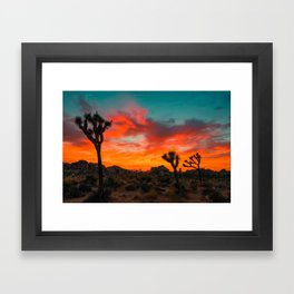 Joshua Tree Parc National Framed Art Print