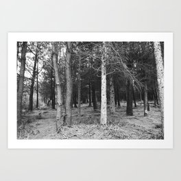 BLACK AND WHITE// FOREST Art Print