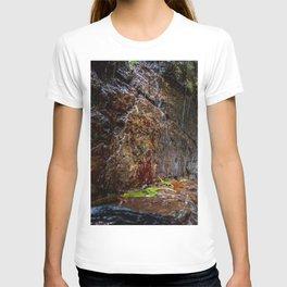 Catarata Ananda (Ananda Waterfall) T-shirt
