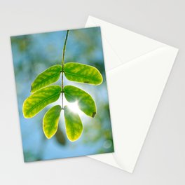 Leaking Light Stationery Cards